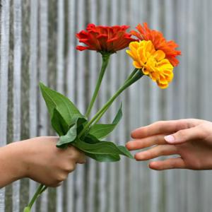人に親切にすると自分も幸せになる、という記事のイメージ画像