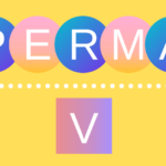 幸せのモデル「PERMA-V」のイメージ画像